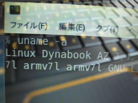 DYN.jpg